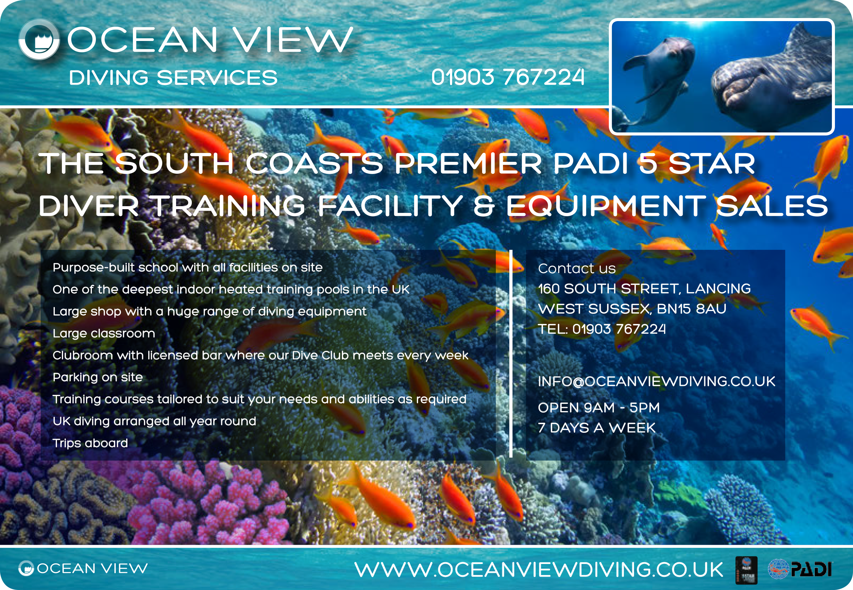 Ocean View Diving Services